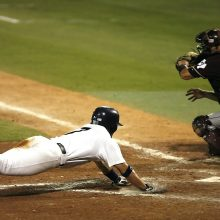 Baseball Player Diving For The Plate