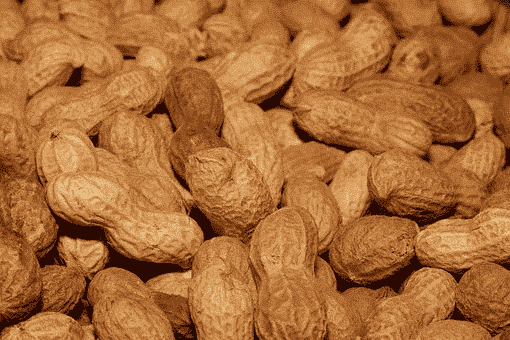 Peanuts, which can form an important source of the protein needed for injury recovery.