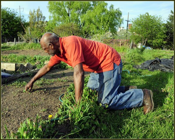 Man doing gardening in a kneeling position